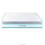 Linenspa 10 Inch Memory Foam Mattress